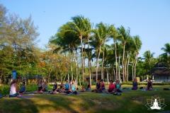 Yoga unter Palmen
